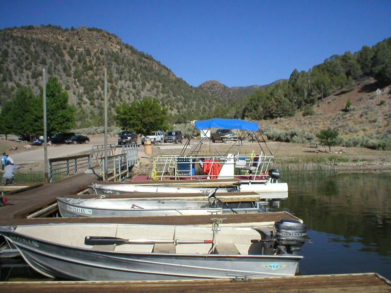 Big Fish Boat Rental -